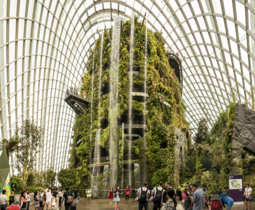 Cloud Forest Conservatory