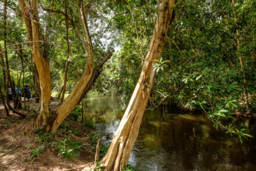 Siem reap river at Kbal Spean