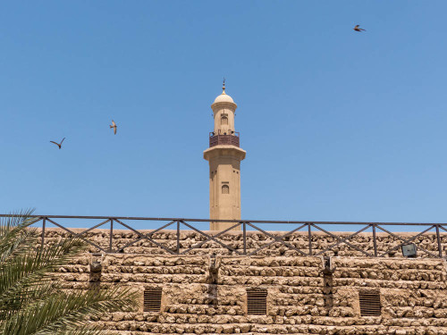 Grand Mosque Minaret From The Dubai Museum with Flying Common Swifts