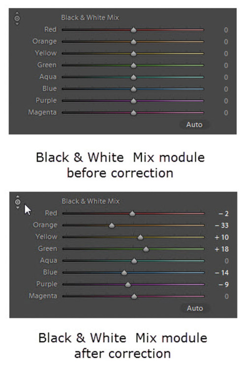 Black and white mix and target adjustment tool