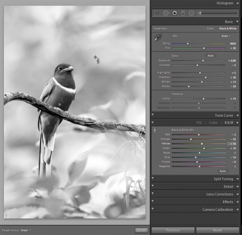 Using selective color under target adj tool