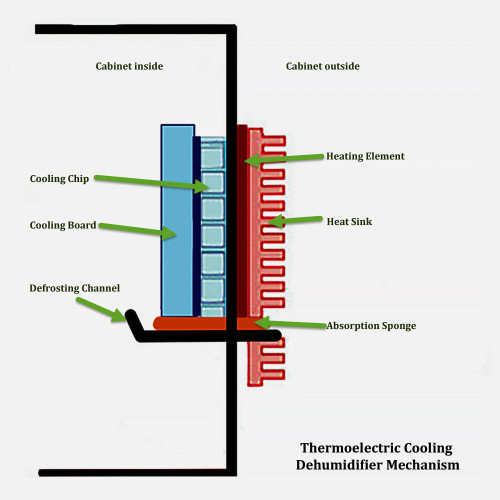 Thermoelectric dehumidifier mechanism