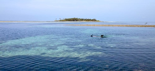 Snorkeling in shallow waters, Pitti Island is far away