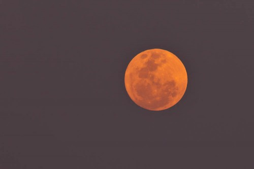 Hazy Supermoon with 300mm + 1.4x